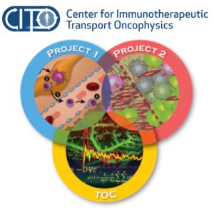 Center for Immunotherapeutic Transport Oncophysics
